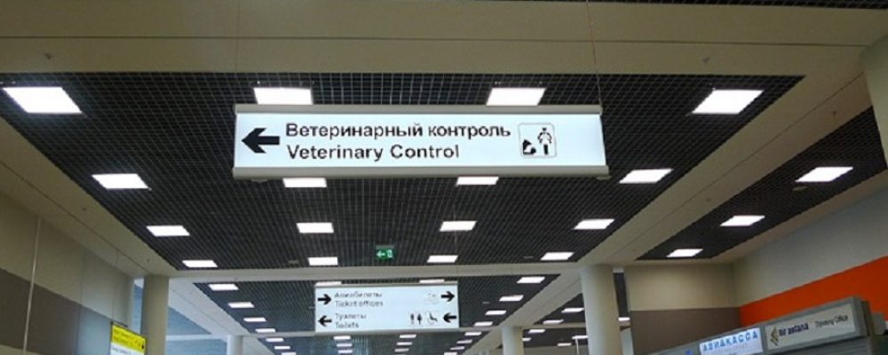 Veterinary control at the border