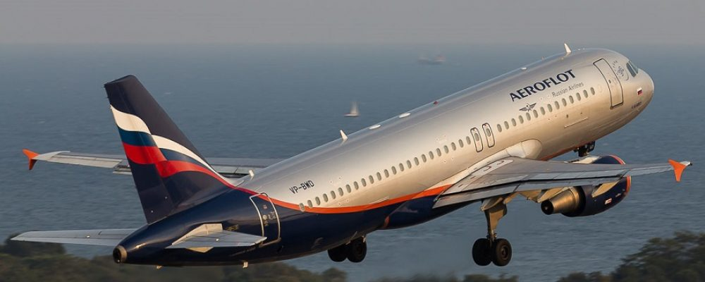 Transportation of animals by the airline «Aeroflot»