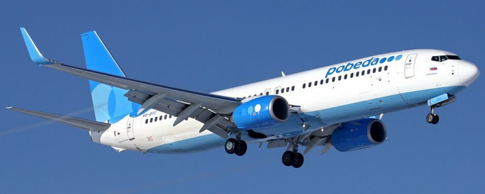Перевозка животных авиакомпанией «Победа»
